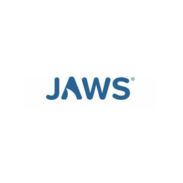 Jaws Scripting Assessment (Full Day)