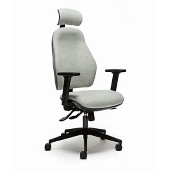 Orthopaedica 100 High Back Chair with Headrest